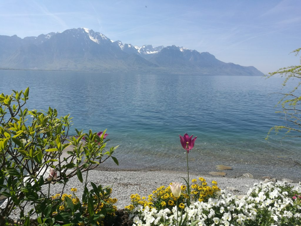 Lake Geneva at Montreux