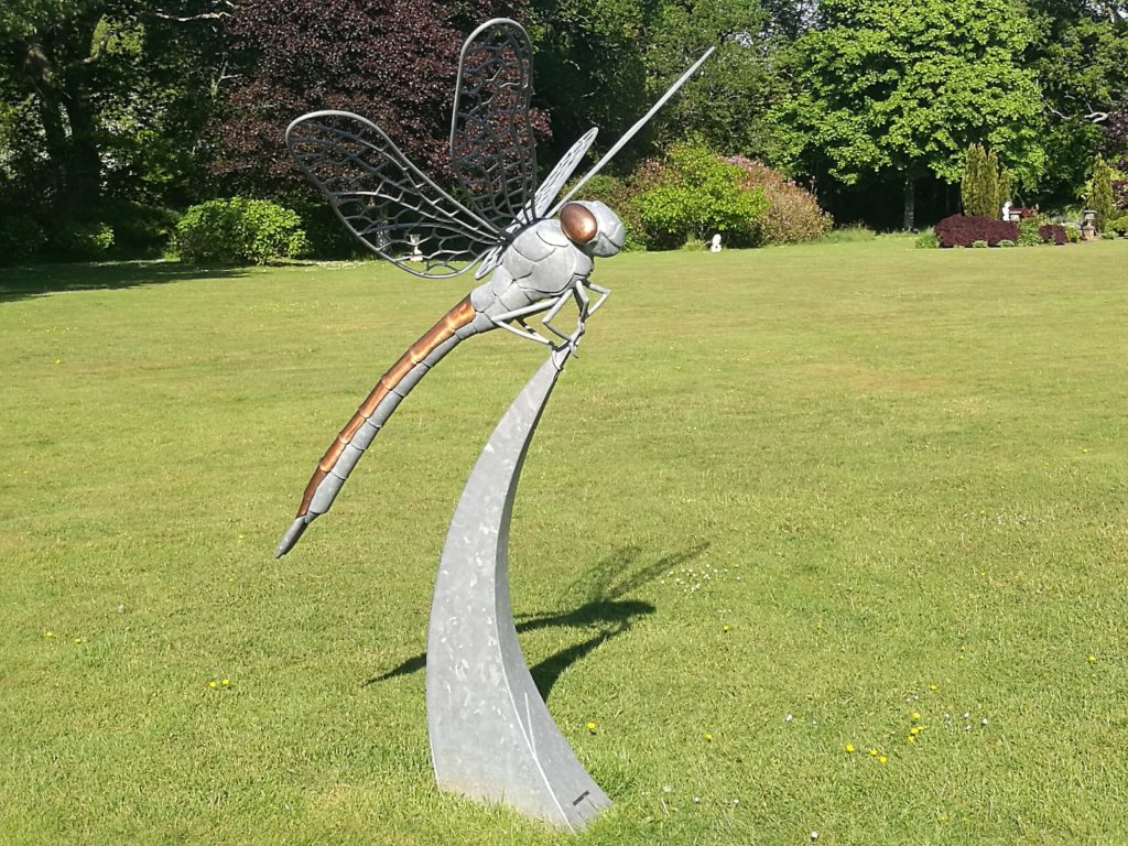 Dragonfly sculpture at Moorland Bay Hotel