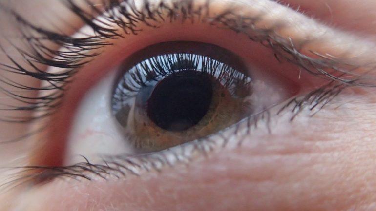 eye and macular disease
